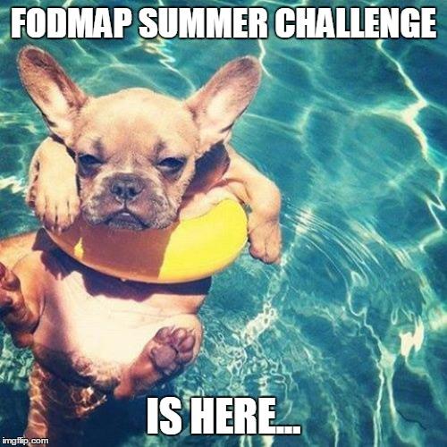 fodmap challenge